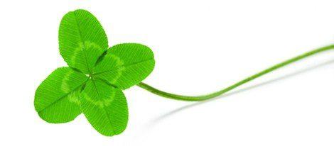 ¿Por qué el trébol de cuatro hojas da buena suerte?