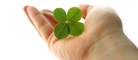 Regala un trébol de cuatro hojas a alguien muy especial