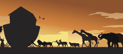 Según los católicos, la superstición del gato negro proviene del arca de Noé