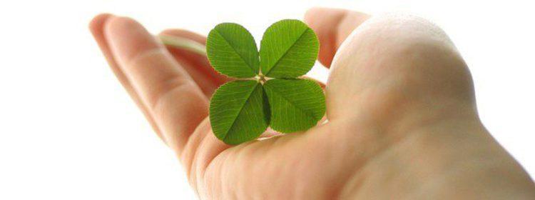 Supersticiones: ¿Por qué da suerte encontrar un trébol de cuatro hojas?