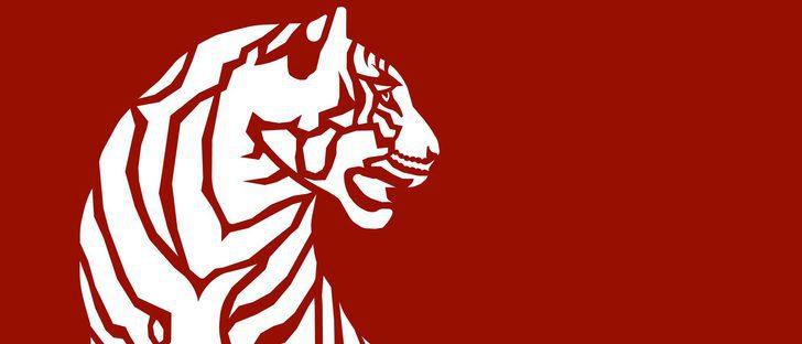 El Tigre del Horóscopo chino: fechas, carácter y características