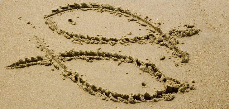 Descubre cuáles son los mejores rituales para atraer el dinero si perteneces al signo Piscis