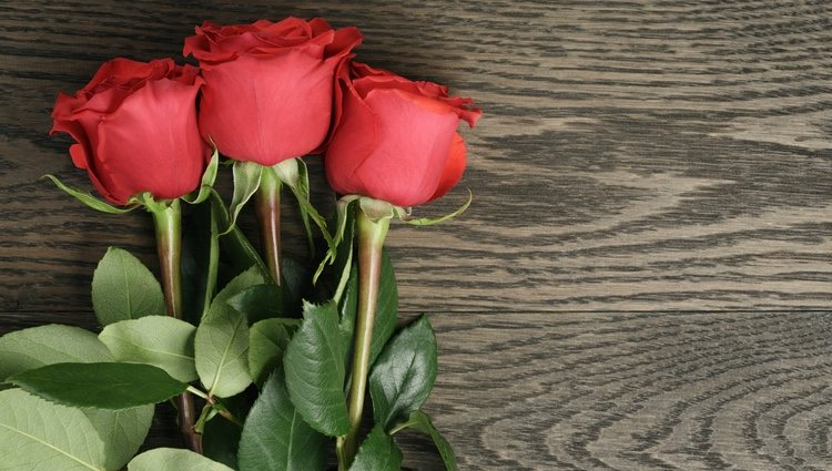 Coge los siete pétalos de una rosa