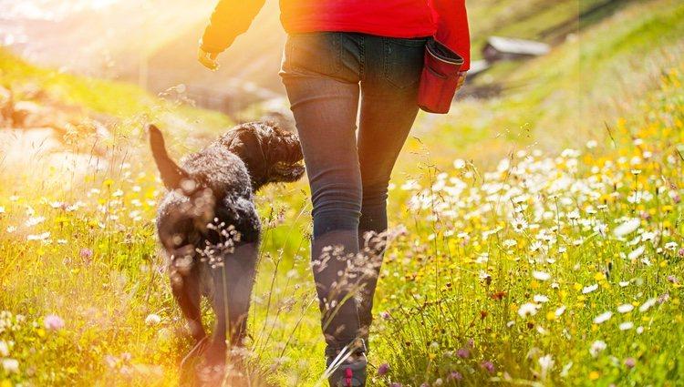 Salir a pasear o hacer algún deporte puede venirte bien