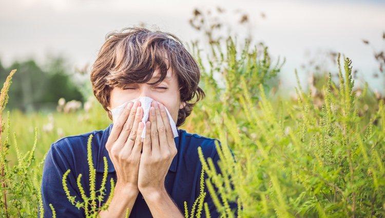 Aries sentirá los síntomas de la alergia