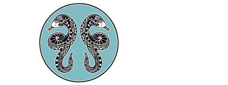 Horóscopo chino 2016: serpiente