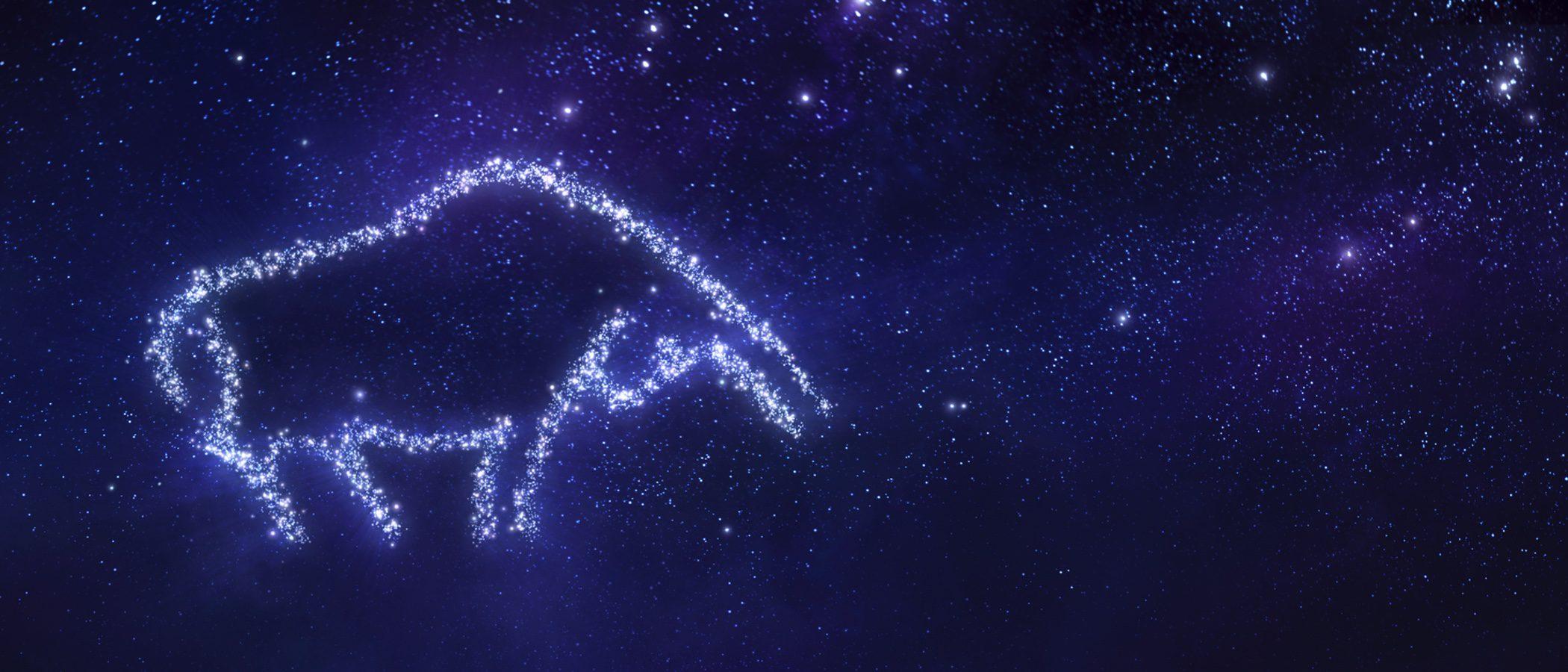 Horóscopo diciembre 2016: Tauro