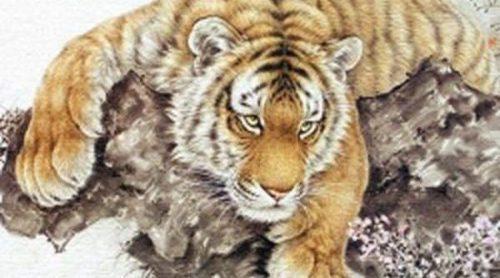 Horóscopo Chino 2012: Tigre, necesitarás mucha paciencia, flexibilidad y cuidados